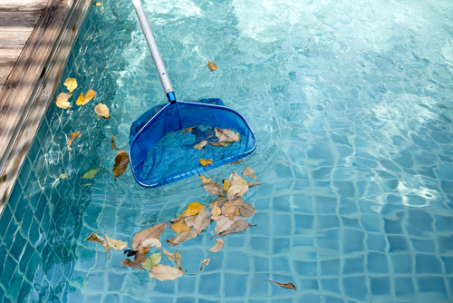 Clean Up Pool Leaf Debris Without Clogging Your Pool Pump or Vacuum