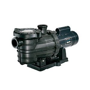 Sta-Rite Dyna-Pro 1.5HP Full Rated Energy Efficient