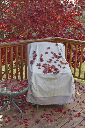 winterized patio chair