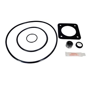 Sta-Rite DuraGlas & Max-e-Glas P2R & P2RA Series Replacement, 1998 to Present - GO-KIT-54